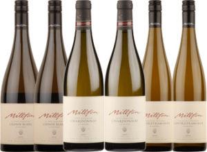 Mixed Millton six case