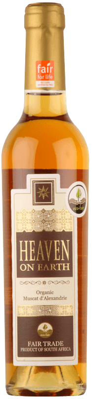 Stellar Heaven on Earth Sweet Muscat-0