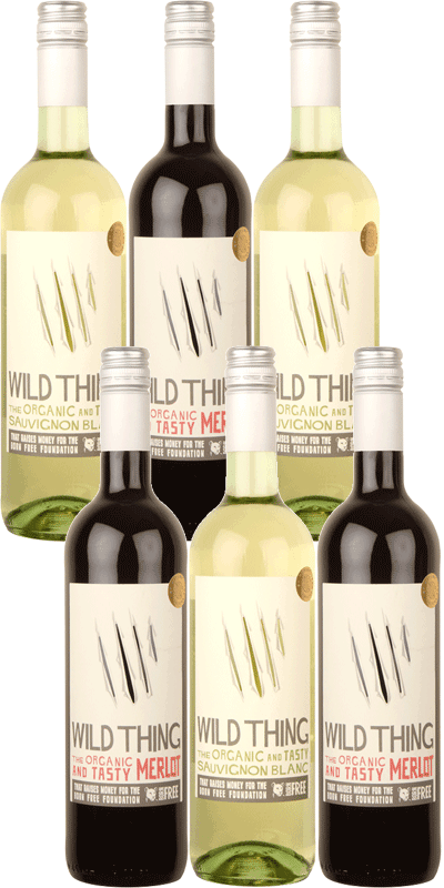 Six Bottle Wild Thing Red and White Case-0
