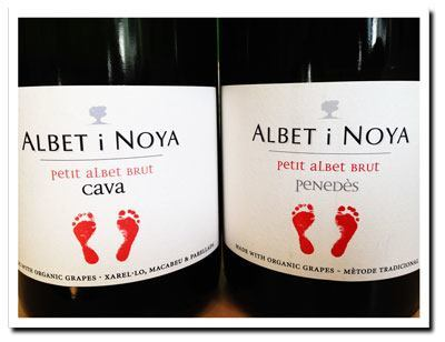 Cava-and-Penedes-from-Albet-i-Noya