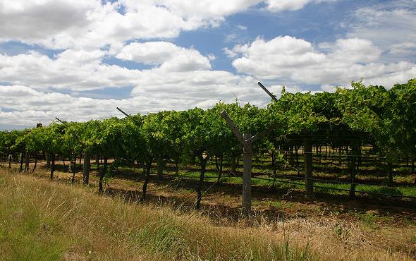 west australian wine regions