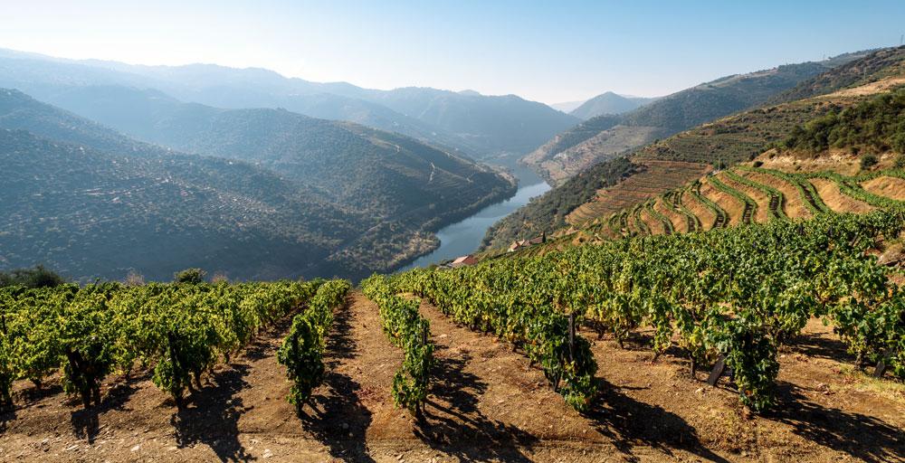 Duero River Valley