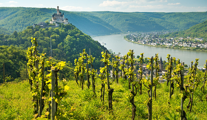 German Riesling wine region Mittelrhein
