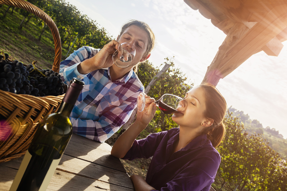 Lovely Young Couple Drinking Wine In Vineyard