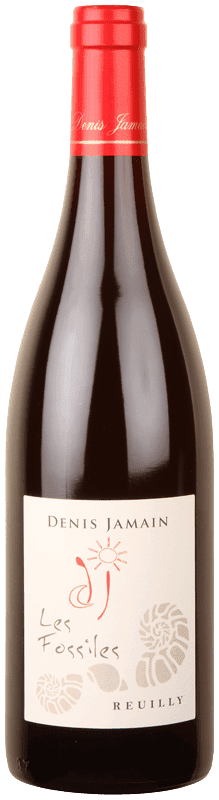 Reuilly 'Les Fossiles' Pinot Noir-0