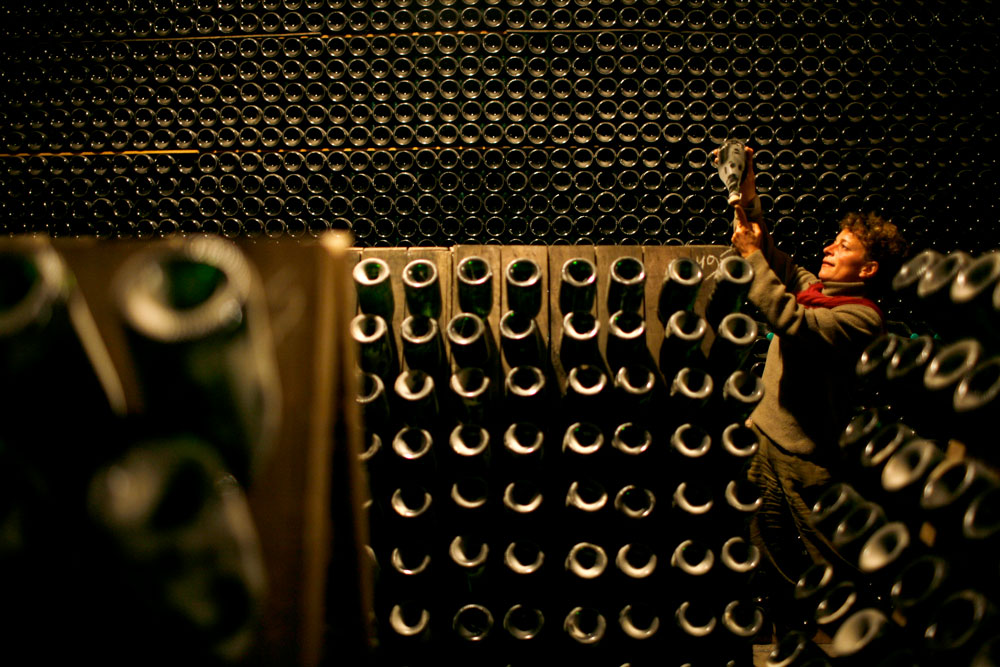 Bottles-of-organic-champagne-being-stored
