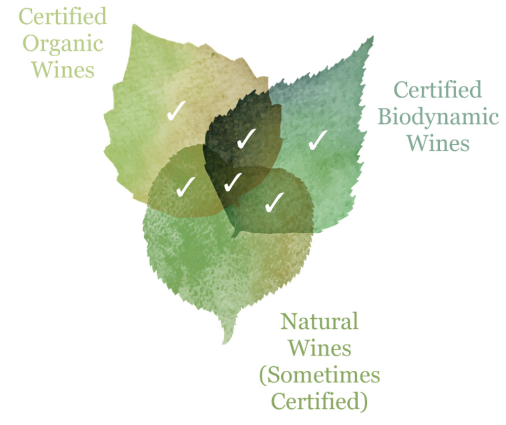 three leaf explaining natural wines