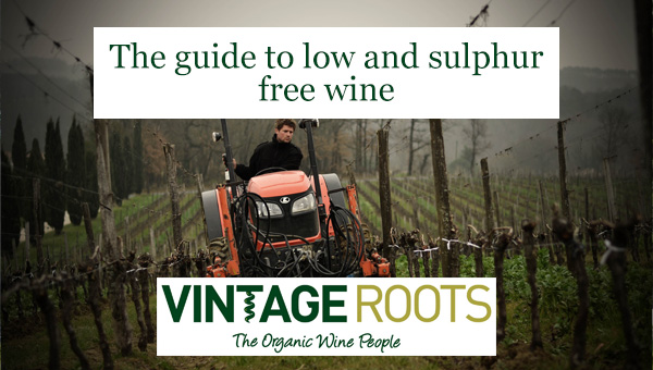 Guide to low and sulphur free wine