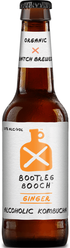 Bootleg Booch Ginger Kombucha Beer