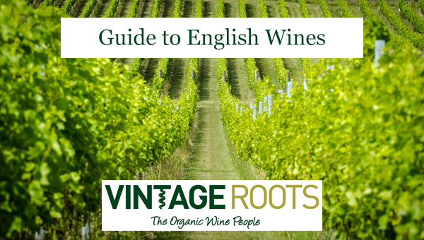 Guide to English Wines