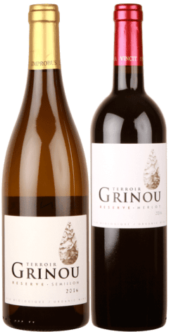 Great Grinou Grapes