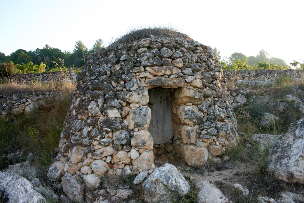 Stone hut in vineyard