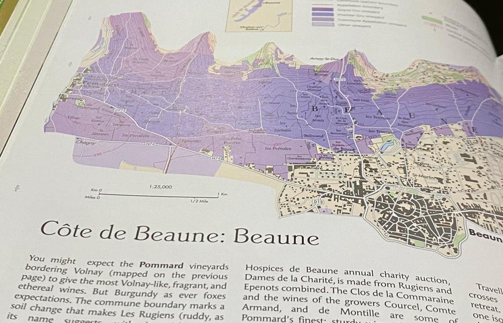 Cote de Beaune