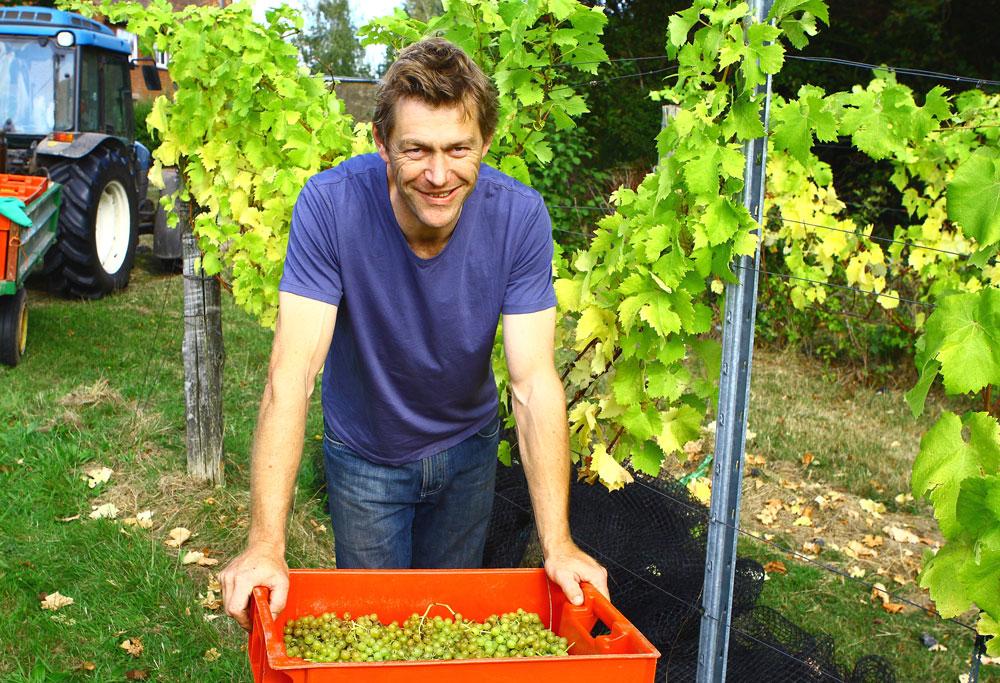 Will Davenport owner of Davenport organic vineyards